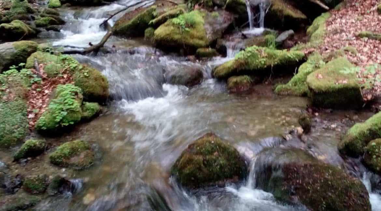 golija klima, golija reke