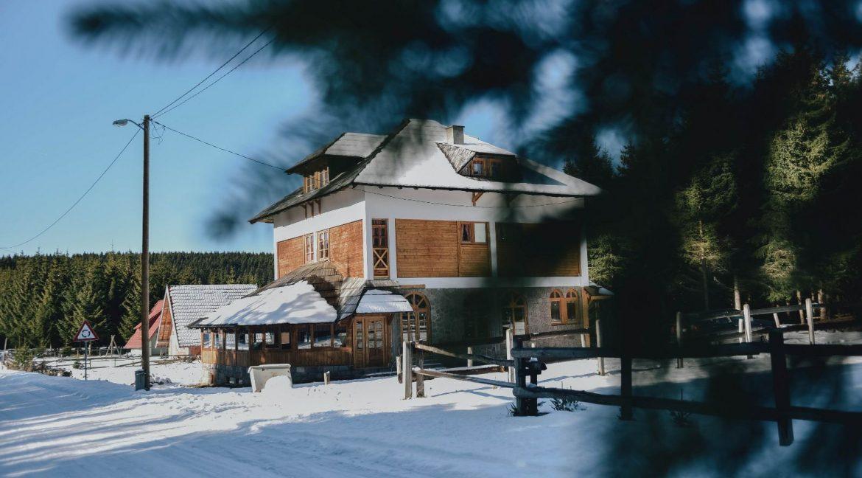 vila-ivanovic-29