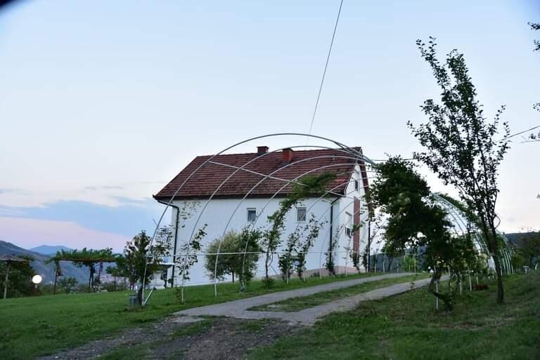 vila-dusanovac-10
